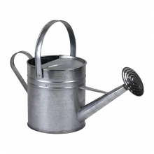 Galvanised Metal Rose Watering Can 2 Gallon